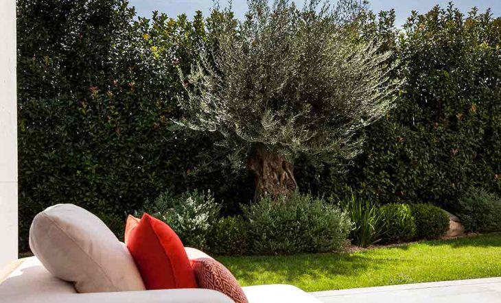 Paisajismo responsable cómo hacer del jardín un espacio sostenible
