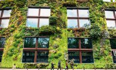 Fachadas verdes: el jardín vertical