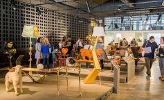 Vuelve la Barcelona Design Week centrada en la sostenibilidad