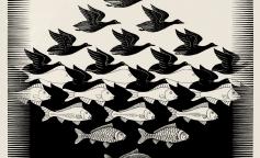 Escher: El maestro del ilusionismo y la perspectiva