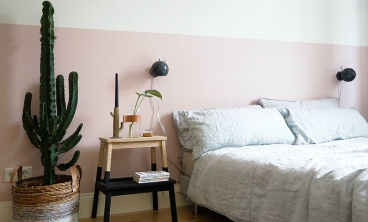 Decorar con plantas de interior