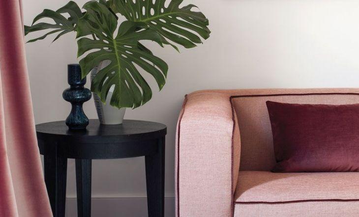sofá rosa cortinas rosas y planta