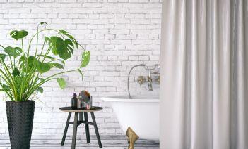 Plantas de interior para baño