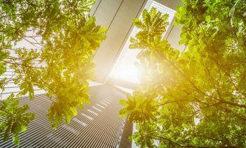 edificios naturaleza