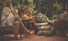 Las mejores plantas de otoño para decorar tu casa