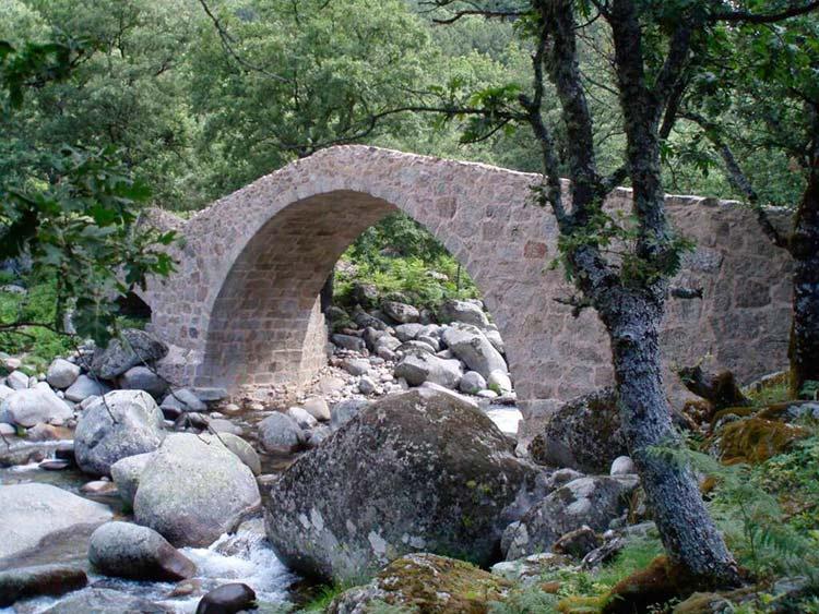 El Puente del Puerto