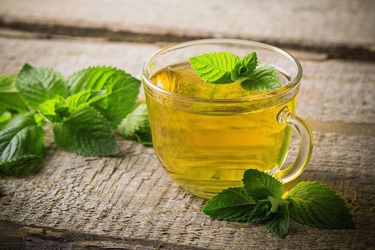 Las 10 mejores plantas para crear tu propio jardín de té