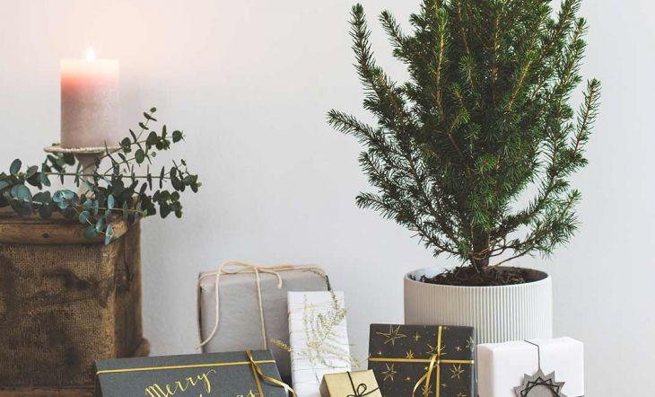 Esta Navidad sé original y envuelve de manera artesanal tus regalos