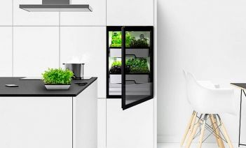 Invernaderos domésticos la revolución para autoabastecerse de vegetales