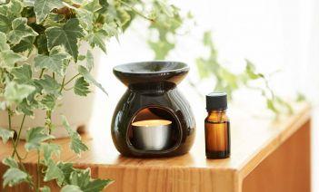 Aromas e inciensos para fomentar la concentración interiores