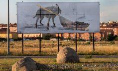 Arte y buen gobierno, Insurrecta, el museo abierto de Gonzalo Borondo