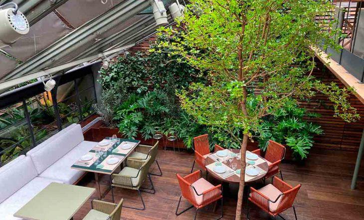 Tragaluz un espacio que vuelve más verde, más fresco y más italiano